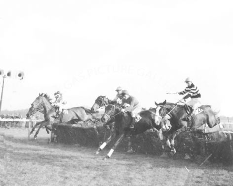 Racehorse Willing Barkis with Jockey C Waller